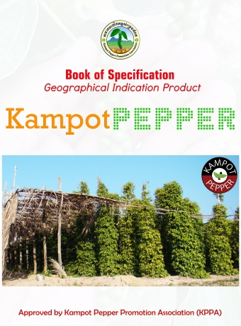 A book of specifications